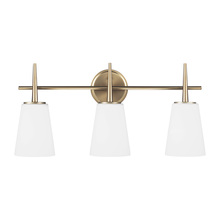 Sea Gull 4440403-848 - Three Light Wall / Bath