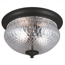 Sea Gull 7826402BLE-12 - Fluorescent Garfield Park Two Light Outdoor Ceiling Flush Mount in Black with Clear Glass