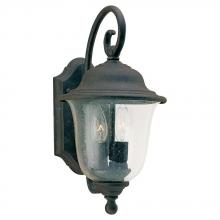 Sea Gull 8459-46 - Two Light Outdoor Wall Lantern