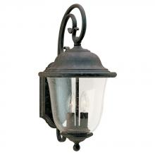 Sea Gull 8460-46 - Two Light Outdoor Wall Lantern